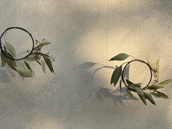 Eucaliptus Circle