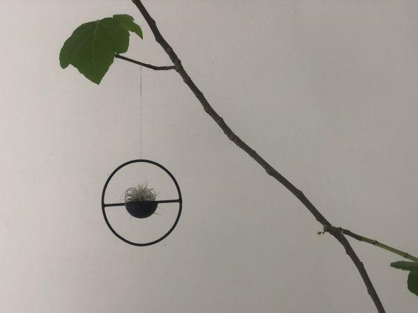 Planter Line S