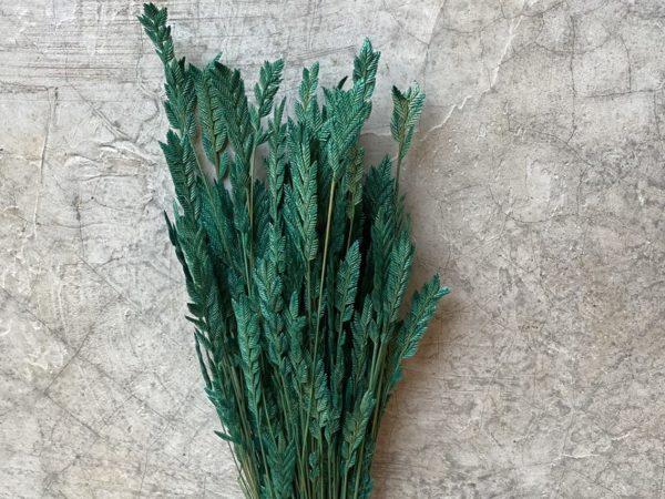 Spiga Green