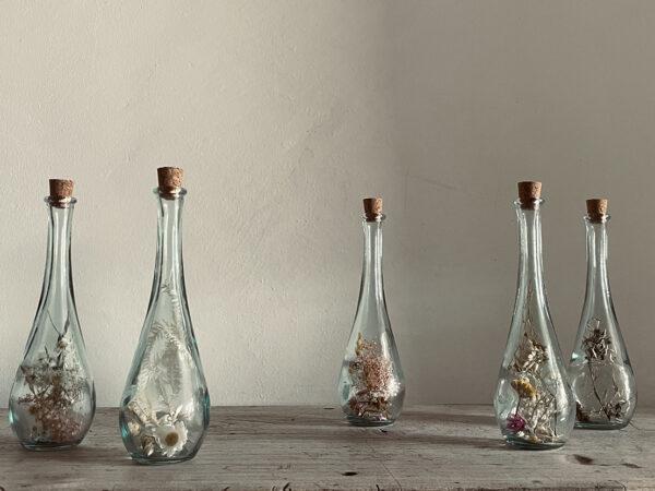 Long Glass Herbarium