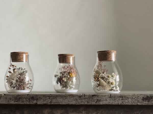 Round Glass Herbarium
